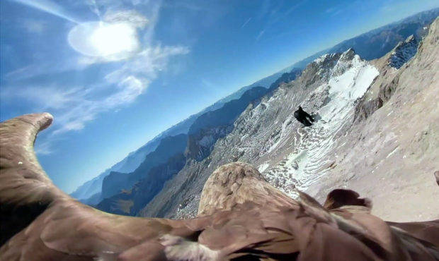 In this image made from video provided by Eagle Wings Foundation/Chopard, aerial footage shot by a camera attached to an eagle of a glacier in Western Europe. photo source @mynorthwest.com