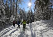 Snowshoeing in Chamonix Mont Blanc