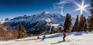 Free ski lessons for all levels : Alpine, Nordic, Hiking and Freeride