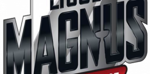 Ligue Magnus - Logo