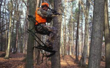 Hunter targeting
