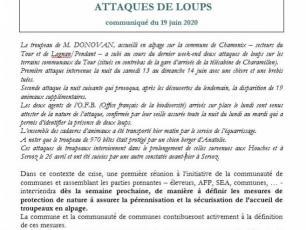 Press Release regarding the Wolfs Attacks in the Chamonix Valley