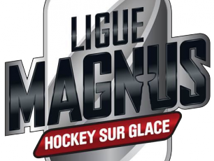 Logo of the Magnus League