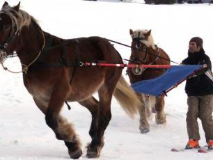 Ski Joering In Chamonix