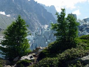 Vert et blanc: Glacier d'Argentière, photo @ https://www.chamonix.com/