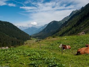 Randonnée et Trekking aux Contamines, près de Chamonix, Col du Bonhomme