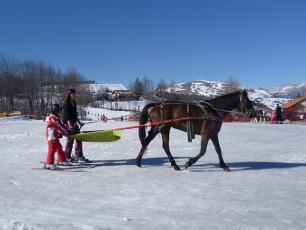 Ski Joering dans la Vallée de Chamonix