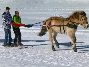 Skis et Chevaux, quel sport à Chamonix