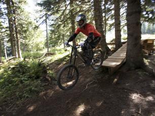 Mountain Bike in Chamonix - Downhill