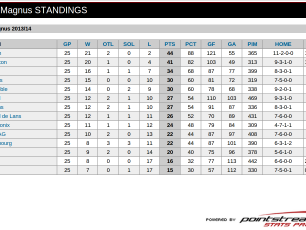 Magnus League: standings before the play-offs